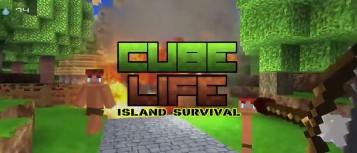 Un jeu wii u en cadeau pour c l brer le succ s de cube life island survival - Jeu de cube comme minecraft ...