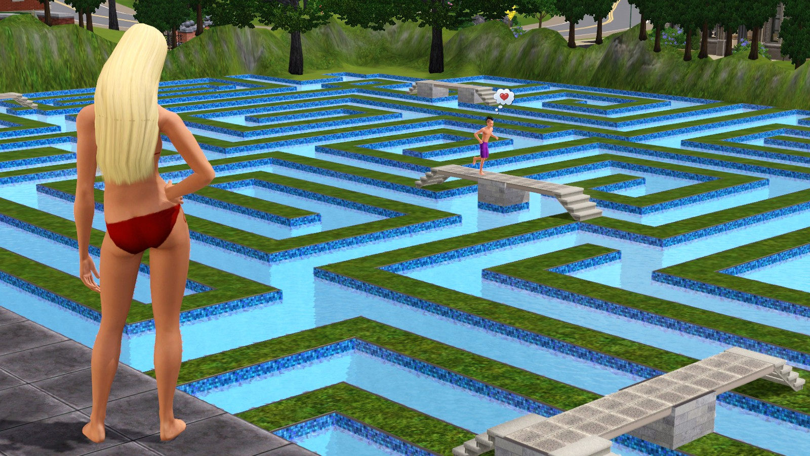 how to play sims 3 on wii